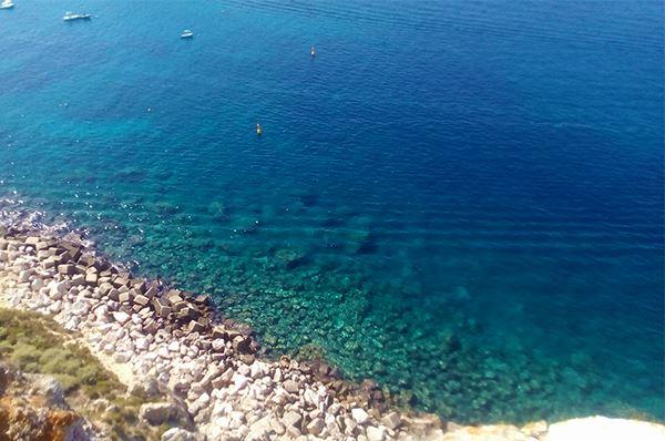Corallo Nero scoperto alle Tremiti, la ricerca made in Puglia