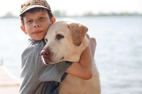 Labrador per i piccoli del reparto Oncoematologia di Bari