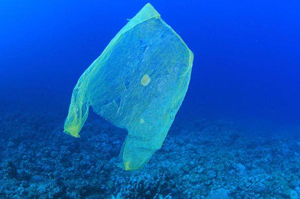 Plastica vietata nelle isole Tremiti, per combattere l'inquinamento