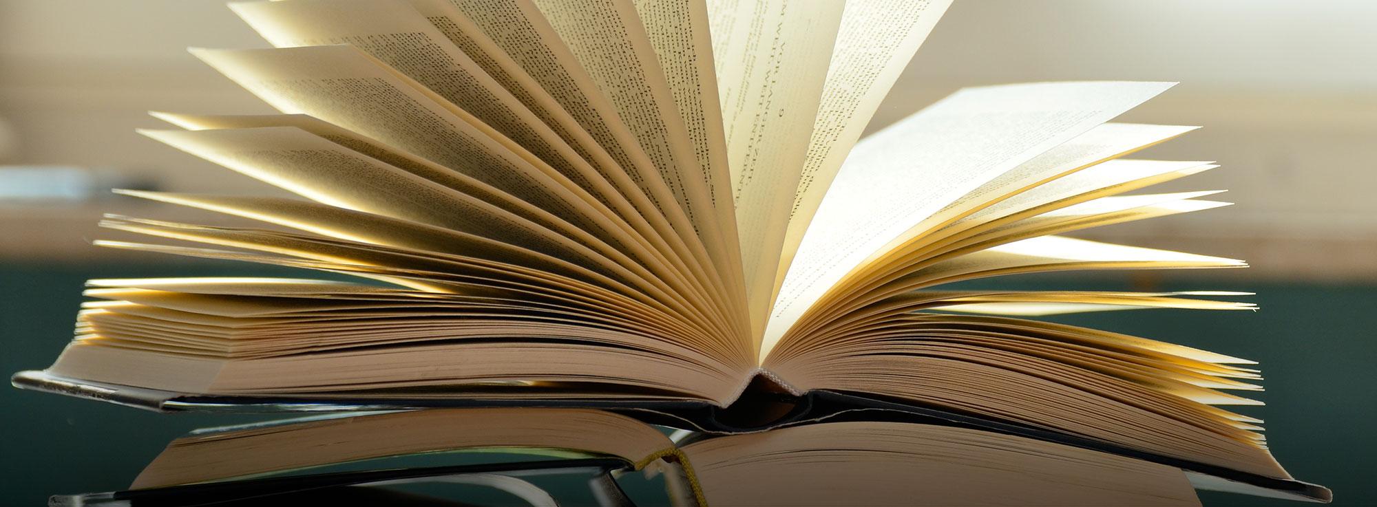 Ostuni: Un'emozione chiamata libro