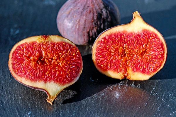 Il fico, frutto immortale, protagonista delle distese in Puglia