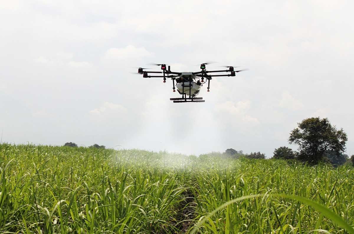 Agronomi pugliesi, tra i primi in Italia ad usare il drone