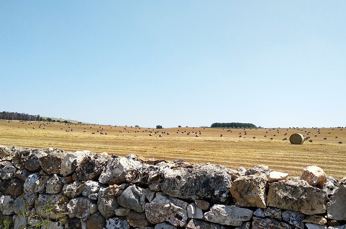 Muretti a secco, l'UNESCO li dichiara Patrimonio dell'Umanità