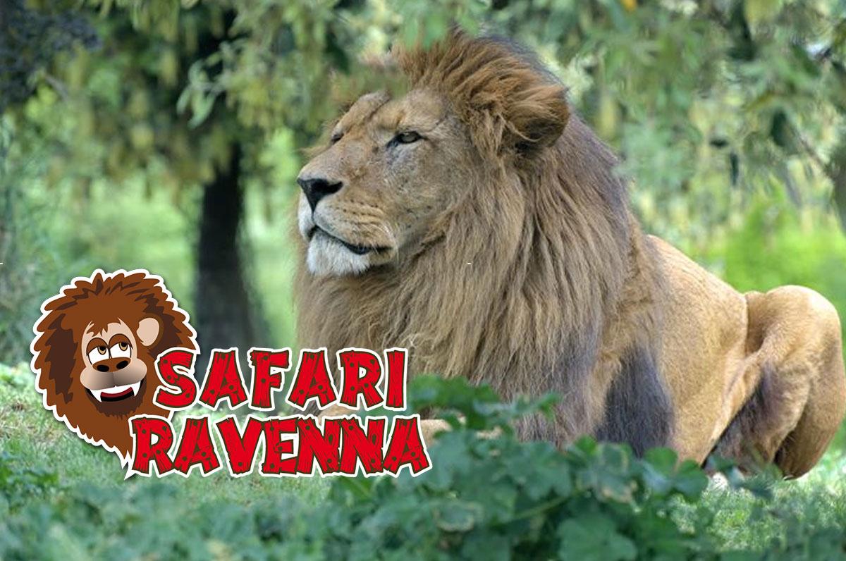 Safaripark Ravenna