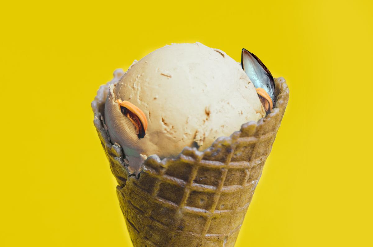 Gelato alle cozze e alle vongole, i nuovi gusti di una gelateria di Taranto