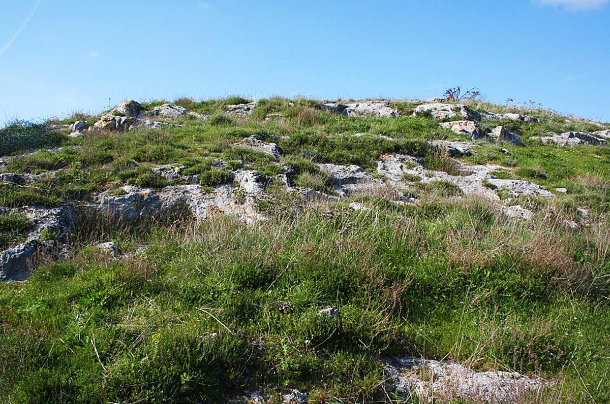 Necropoli di Monte Tabor: storia antica nel cuore del Gargano