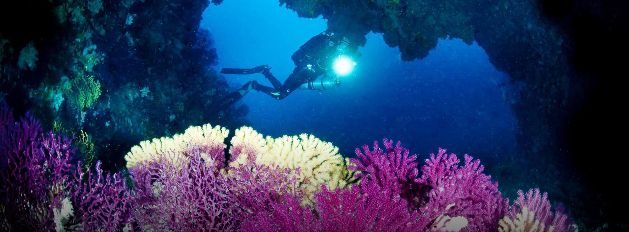 Isole Tremiti: Festa dei trent'anni della Riserva Marina