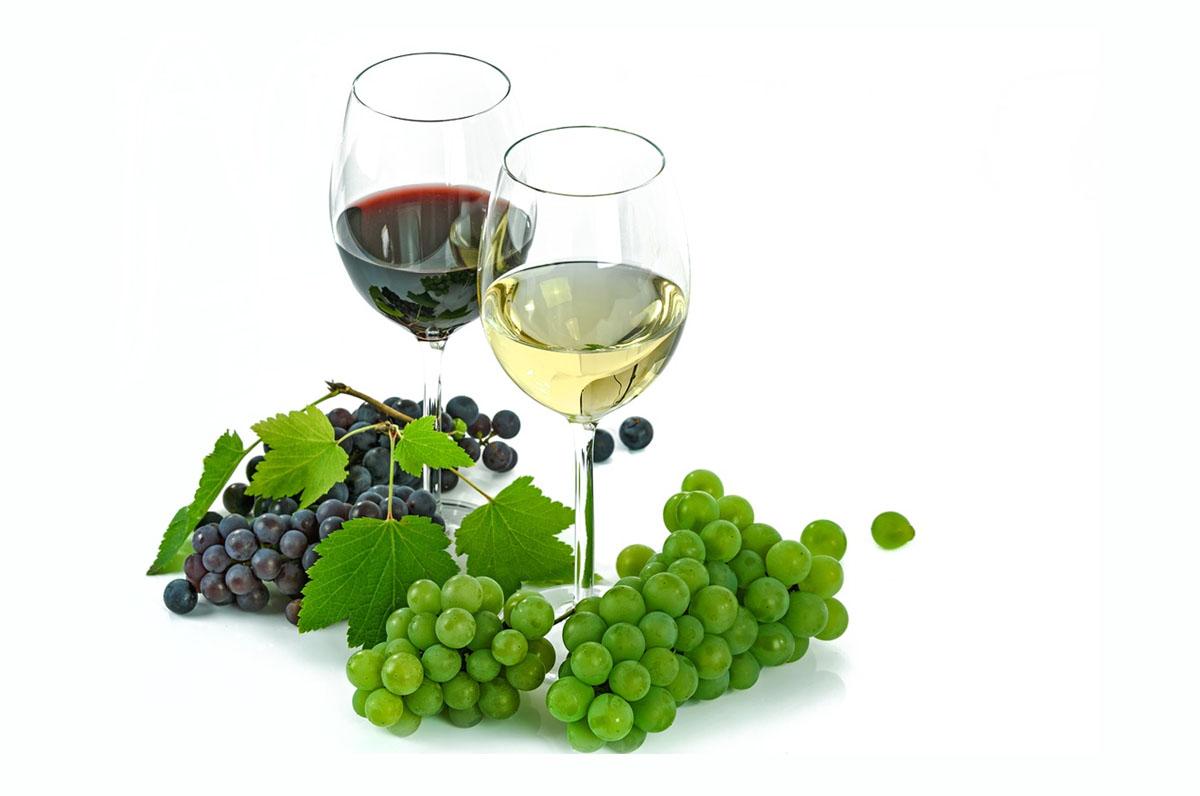 I vini di Puglia piacciono sempre più all'estero: export aumentato del 6,7%