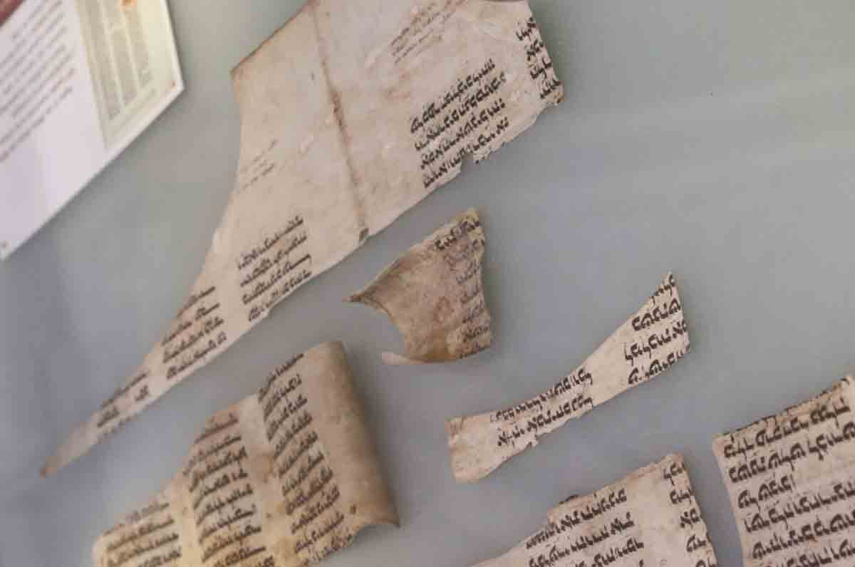 ebrei a Trani