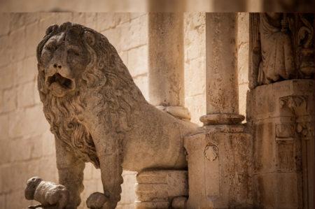 altamura leonessa di Puglia