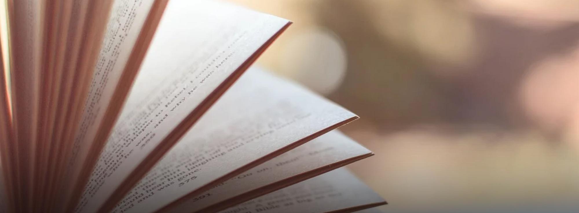 """Trinitapoli: Gli Stati Generali dei lettori ovvero """"Chiacchiere senza distintivo"""""""