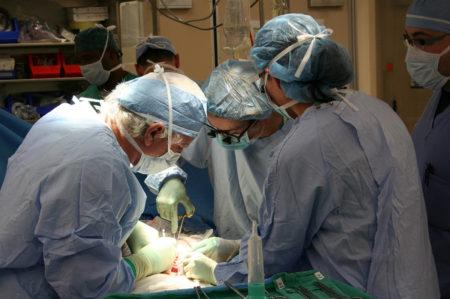 trapianto rene puglia