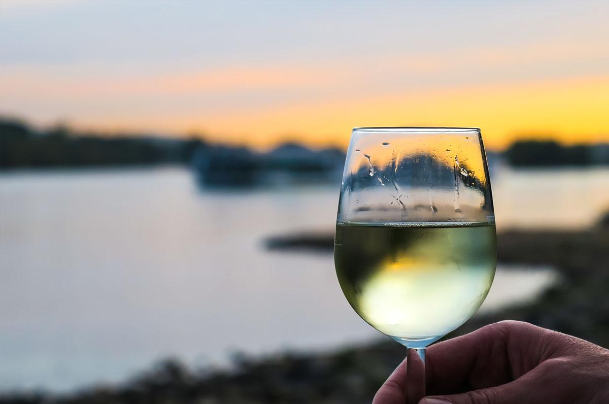 Moscato di Trani, vino bianco D.O.C. della Puglia