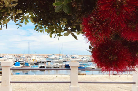 FotografiaMOLA, evento a Mola di Bari