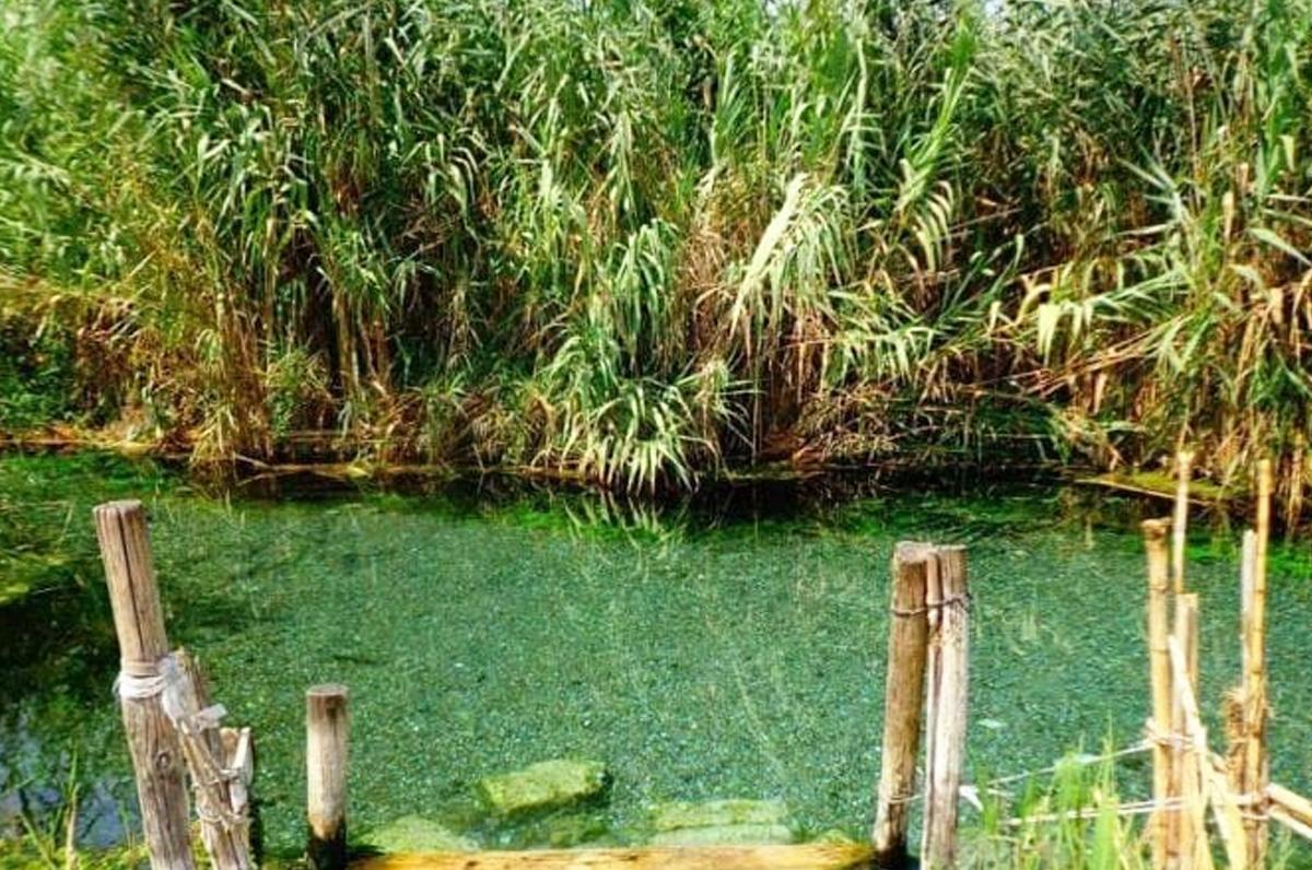 Tara, il fiume rigenerante vicino Taranto