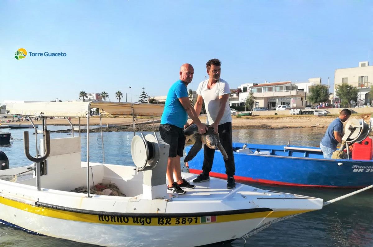 Torre Guaceto, due pescatori salvano una tartaruga dalla plastica