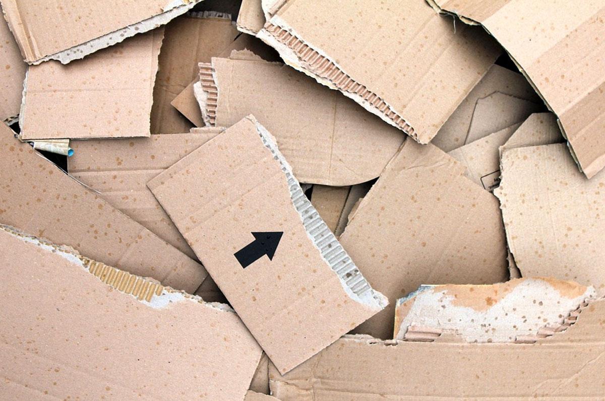 Regione Puglia tra le prime regioni per il riciclo della carta