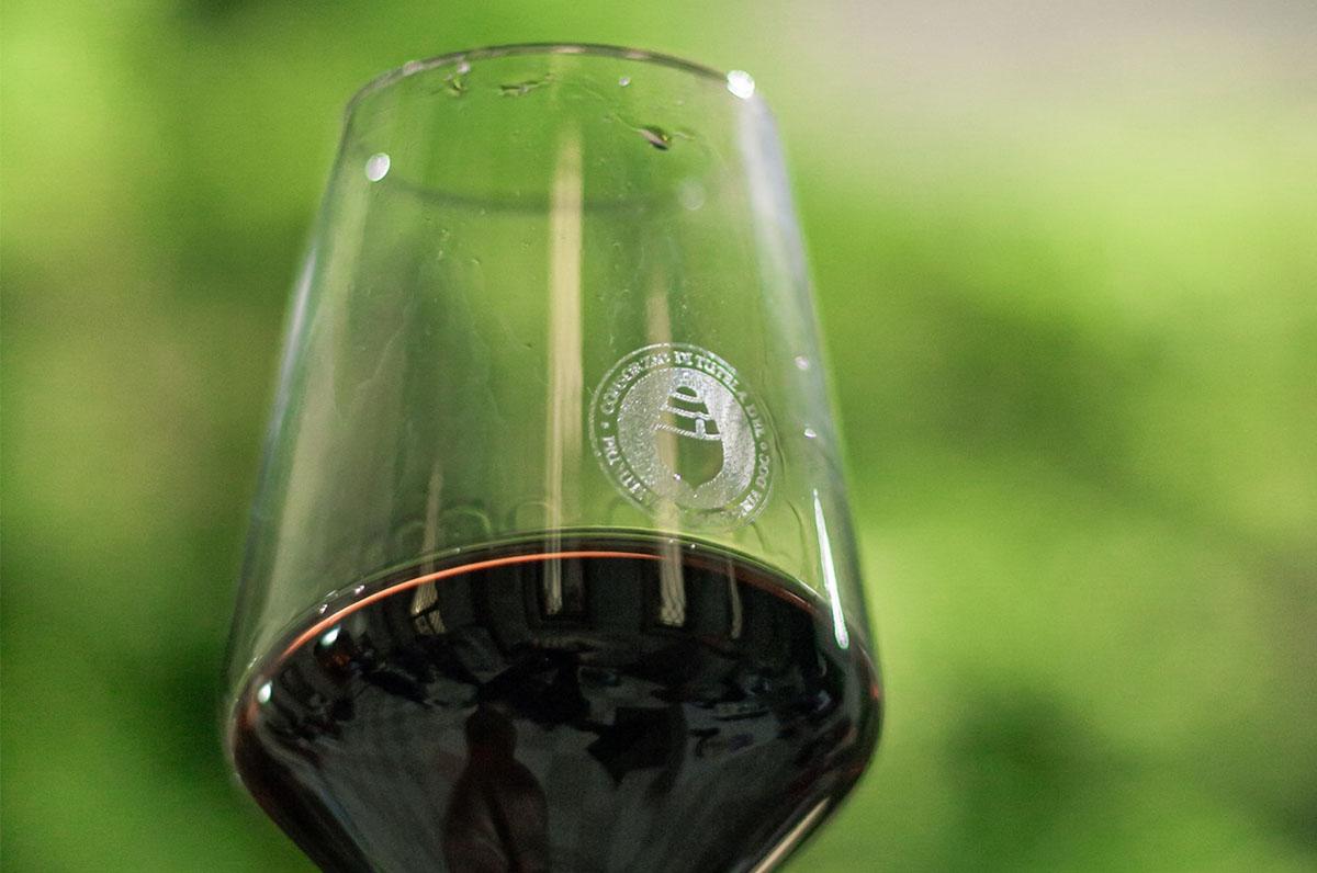 Primitivo di Manduria, eccellente vino rosso DOC