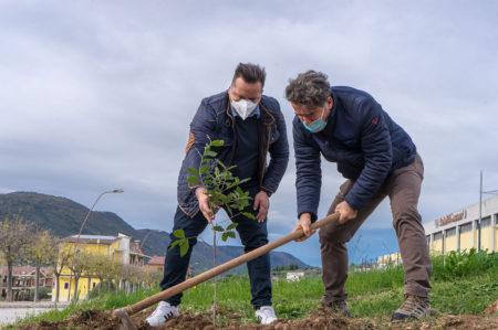 Cagnano Varano, piantumati 3000 alberi