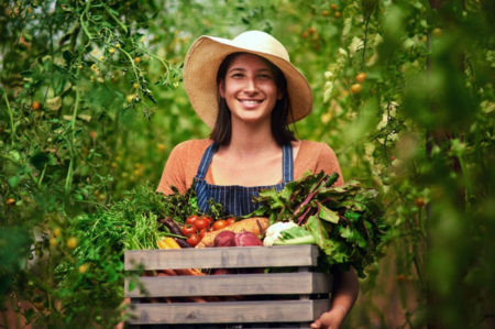 Imprese agricole, Puglia seconda in Italia