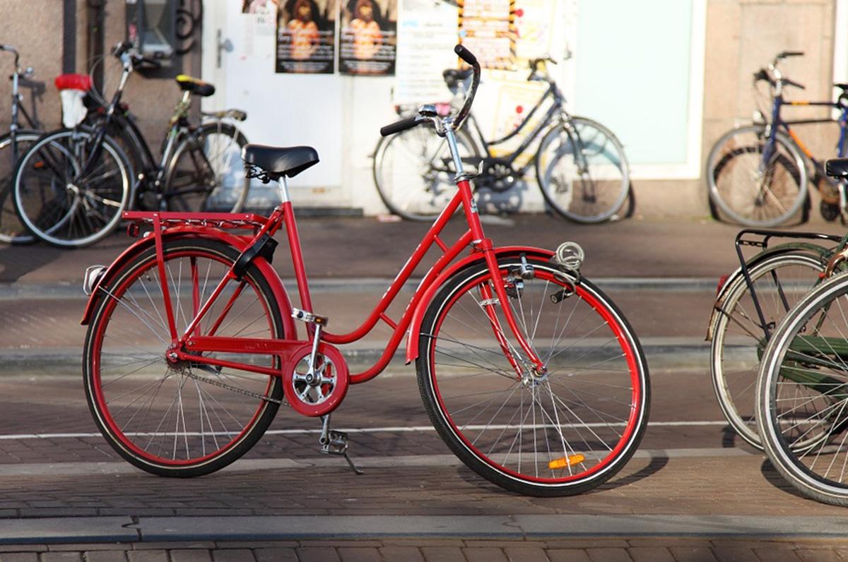 """""""Foggia in bici"""", guadagnare pedalando"""