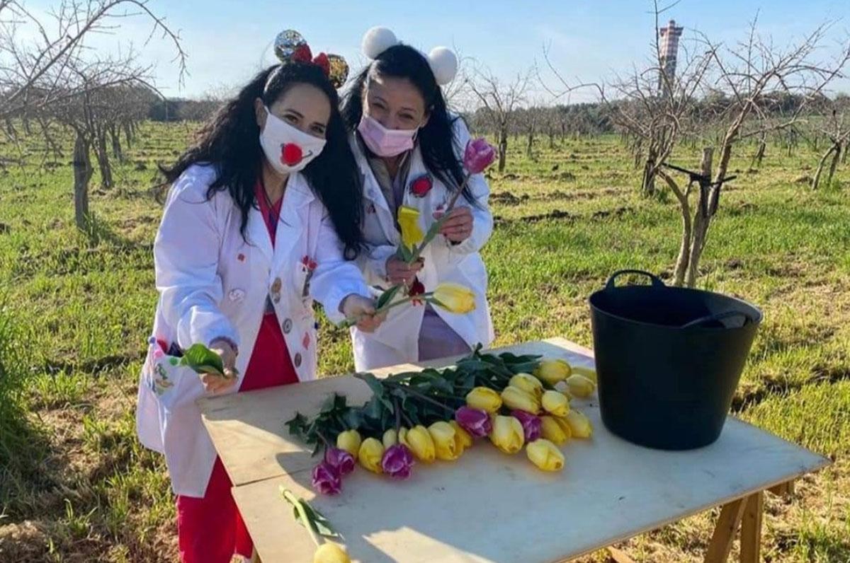 Policlinico Riuniti di Foggia, donati 700 tulipani
